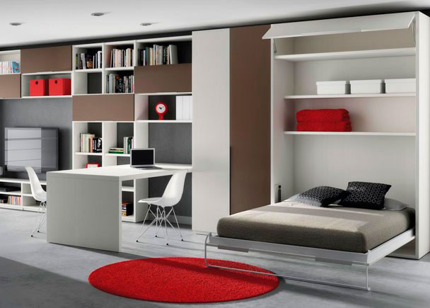 Sala De Estar Y Despacho ~  con mesa de despacho dividiendo los espacios de día y de descanso