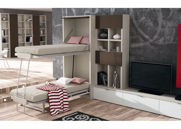 Sal n con litera abatible vertical y composici n mural for Mueble litera abatible vertical